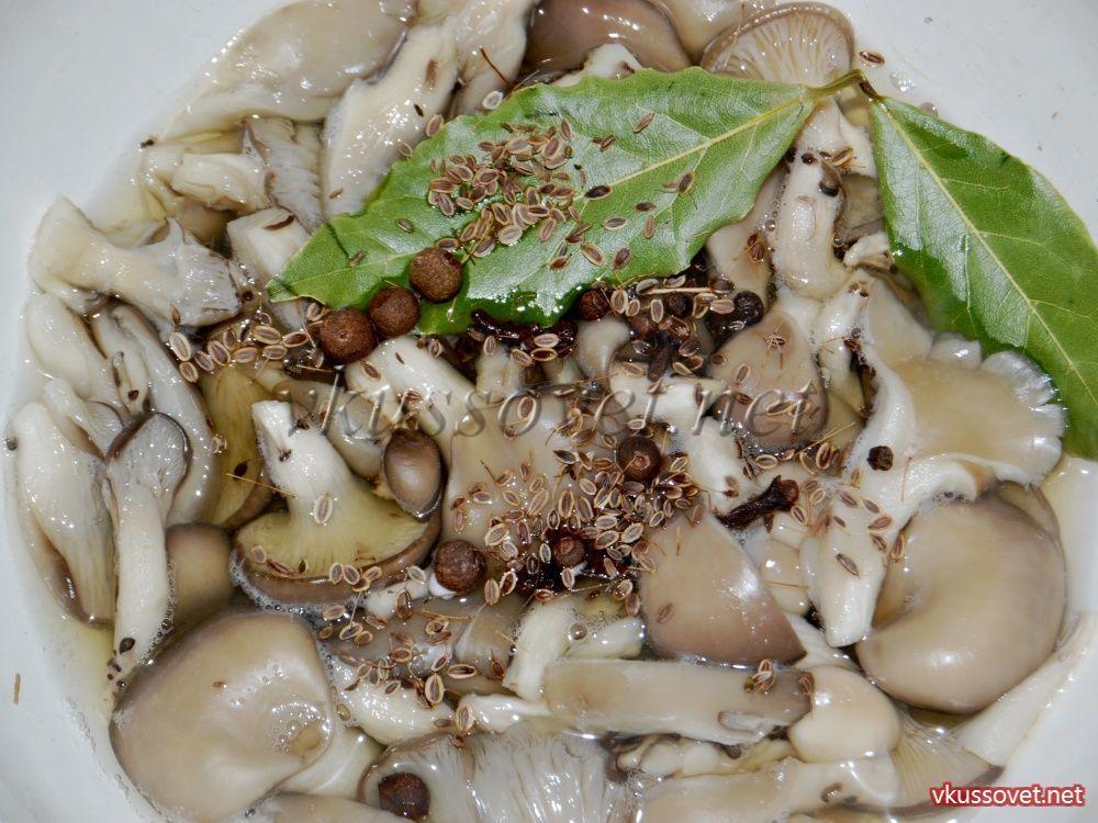 грибы вешенка рецепт с фото